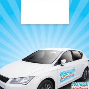 Car-Magnets-24x12-2020